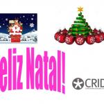 Pai natal na neve à direita, um pinheiro de natal com bolas vermelhas à esquerda. Em baixo à esquerda, feliz Natal em cor de rosa e o logótipo do CRID à direita.